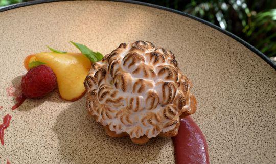 Baked Alaska Raspberry Meringue, Peach Ice Cream, Basil