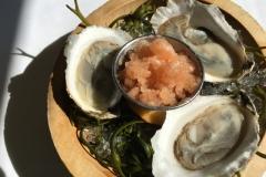 Half Shell Oysters, Peach Mignonette Granita